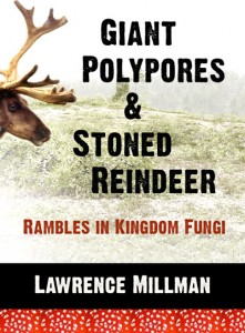 Giant Polypores and Stoned Reindeer